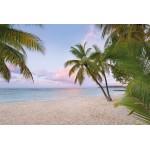 Fototapet Paradise Morning XXL4-528