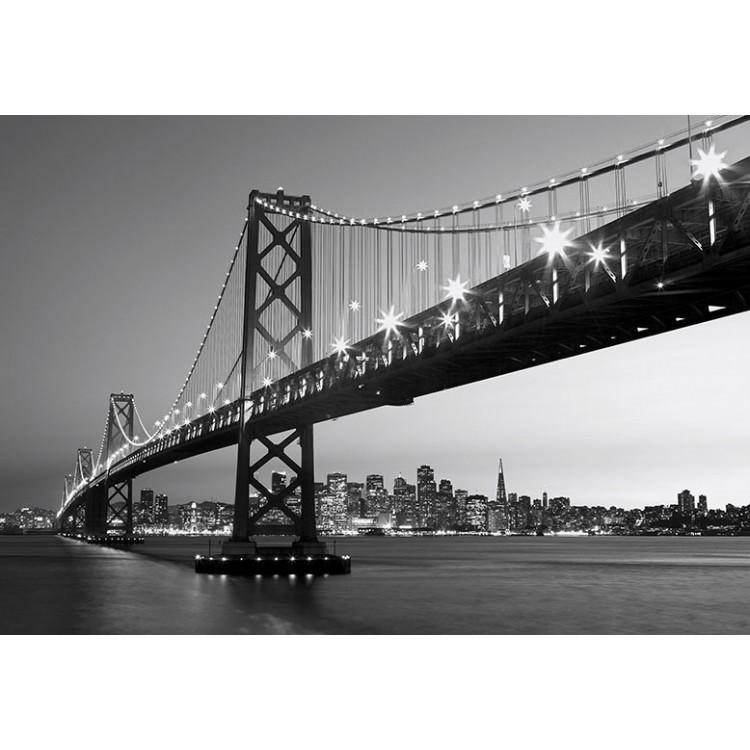 Fototapet San Francisco Skyline 134