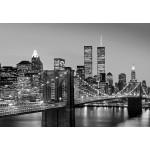 Fototapet Manhattan Skyline At Night 138