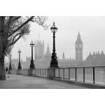 Fototapet ceață în Londra 142