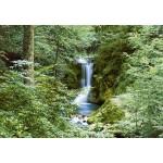 Fototapet Waterfall in Spring 279