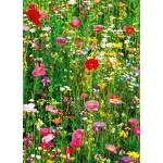 Fototapet Flower Field 375