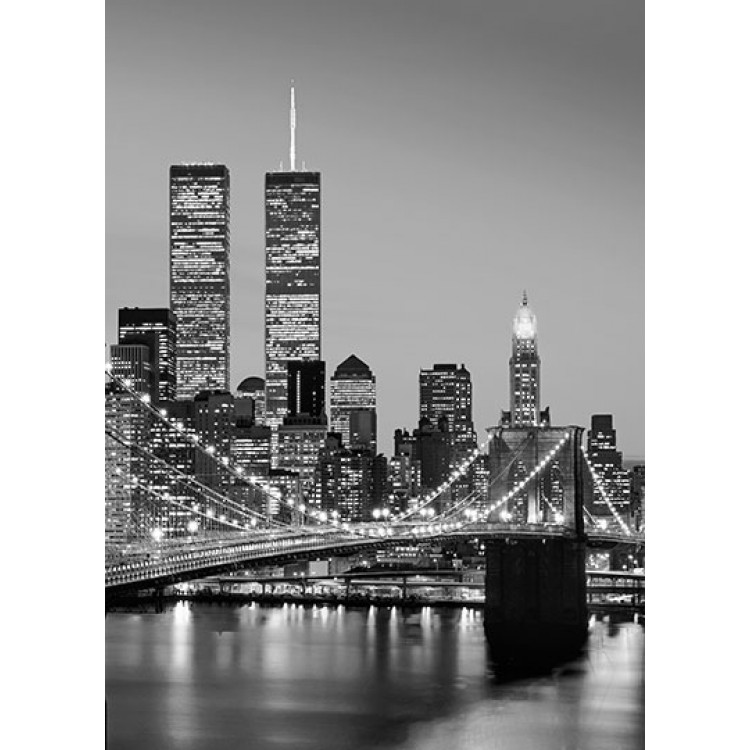 Fototapet Manhattan Skyline At Night 388