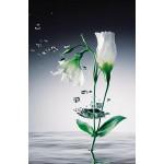 Fototapet Crystal Flowers 673