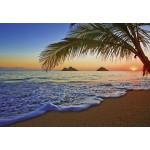Fototapet Pacific Sunrise 955