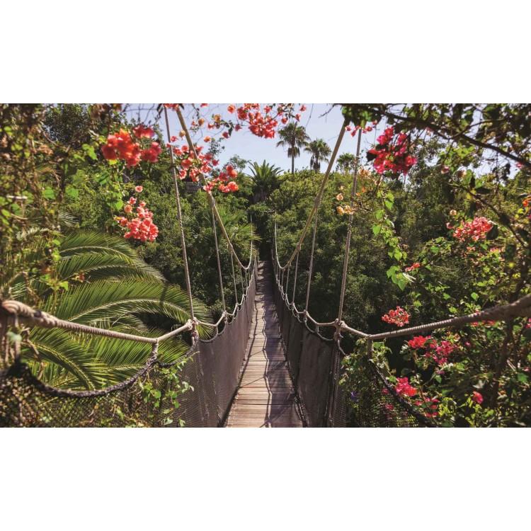 Fototapet Pod in junglă 250