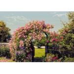 Fototapet Rose Garden 8-936
