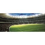 Fototapet Stadion Fotbal 323