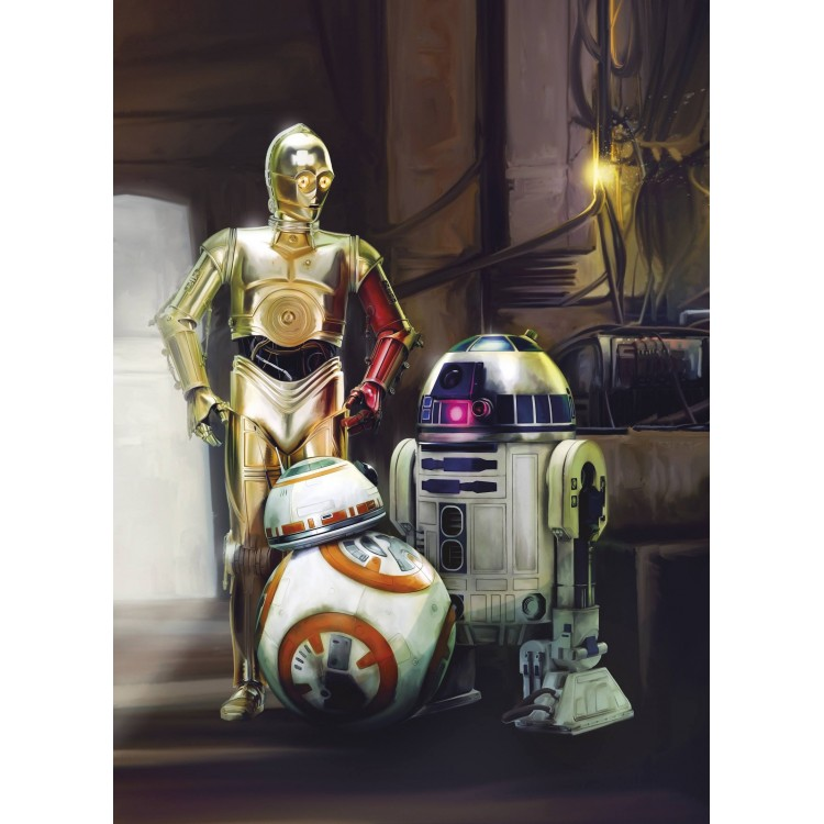 Fototapet Star Wars Three Droids 4-447