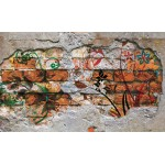 Fototapet Graffiti pe zid de caramida 564