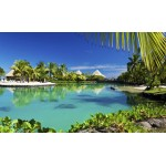 Fototapet Hawaii 577